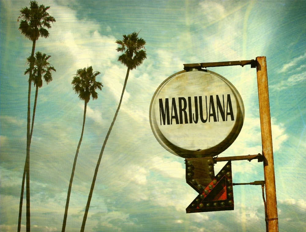 Medical Marijuana in Florida: Questions and Answers
