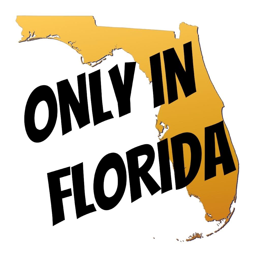 Funny Florida Laws